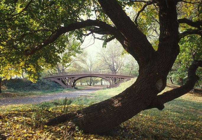 800px-Central_Park_New_York_City_New_York_23_cropped.jpg
